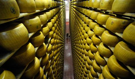090821-cheese-hmed445p.grid-6×2