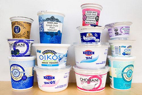 20090824_yogurt_group