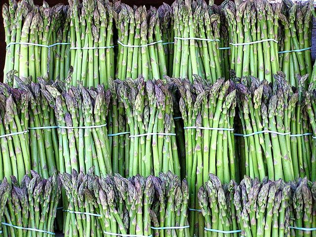 640px-Asparagus_image