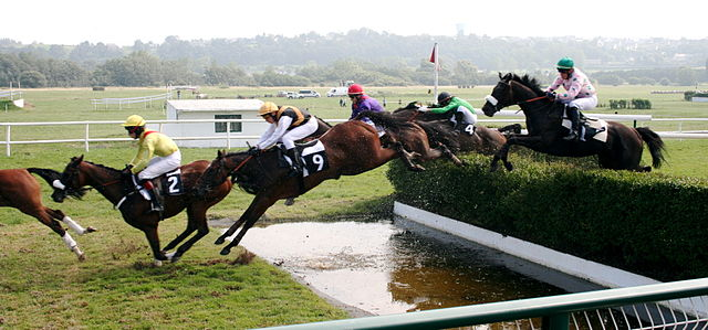 640px_Steeplechase__1257926029_