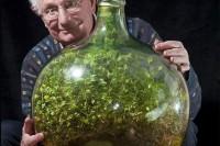 bottle-garden-man