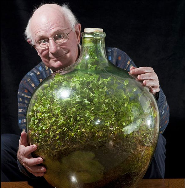bottle-garden-man