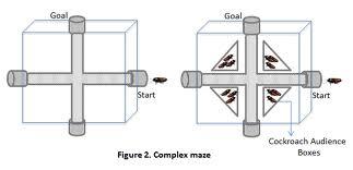 static1-squarespace